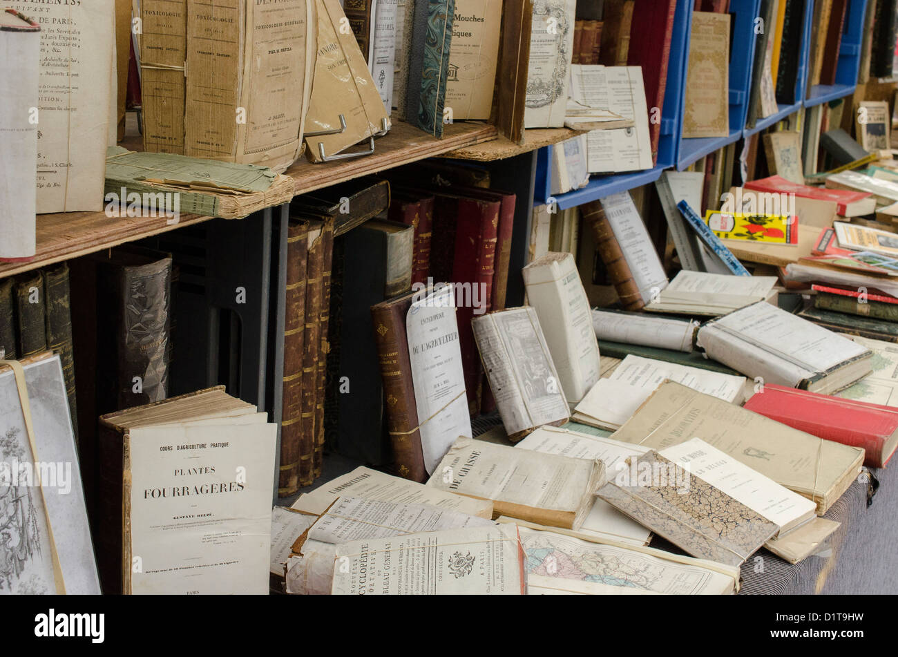 Books on secondhand market stall - Stock Image