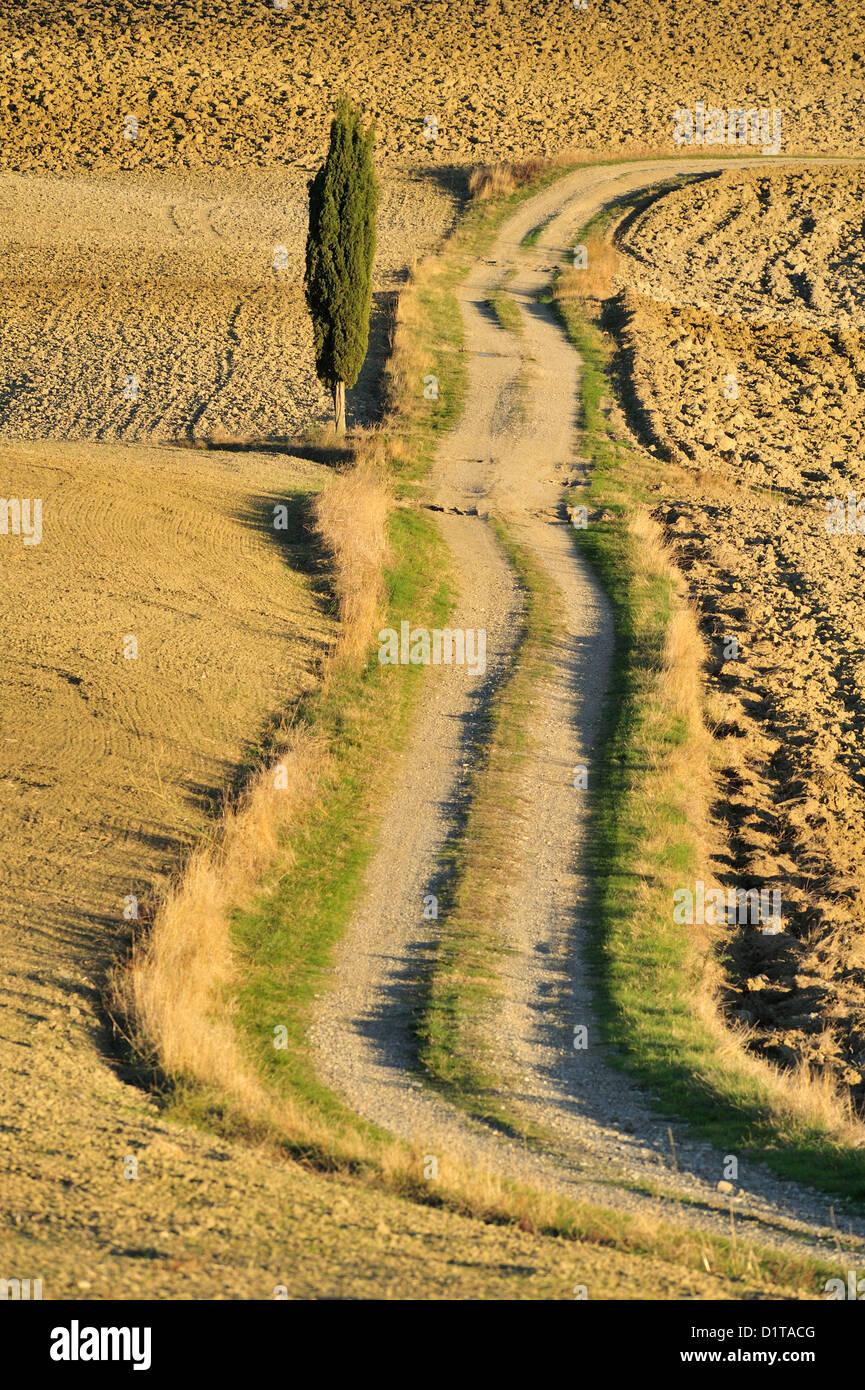 Val d'Orcia landscapes, Pienza, Siena, Tuscany, Italy - Stock Image