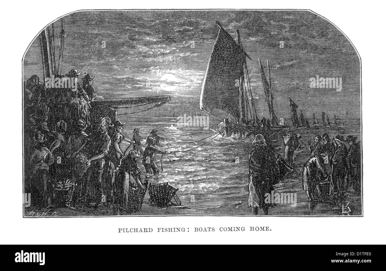Pilchard Fishing; Boats Coming Home; Penzance, Cornwall; Late 19th Century Illustration - Stock Image