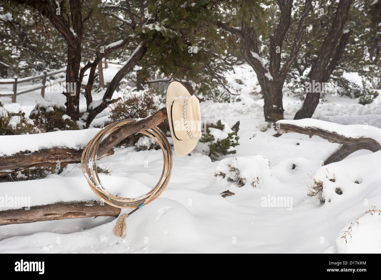 Western ranching equipment including a lasso and cowboy hat on a fence in the thick winter snow. - Stock Image