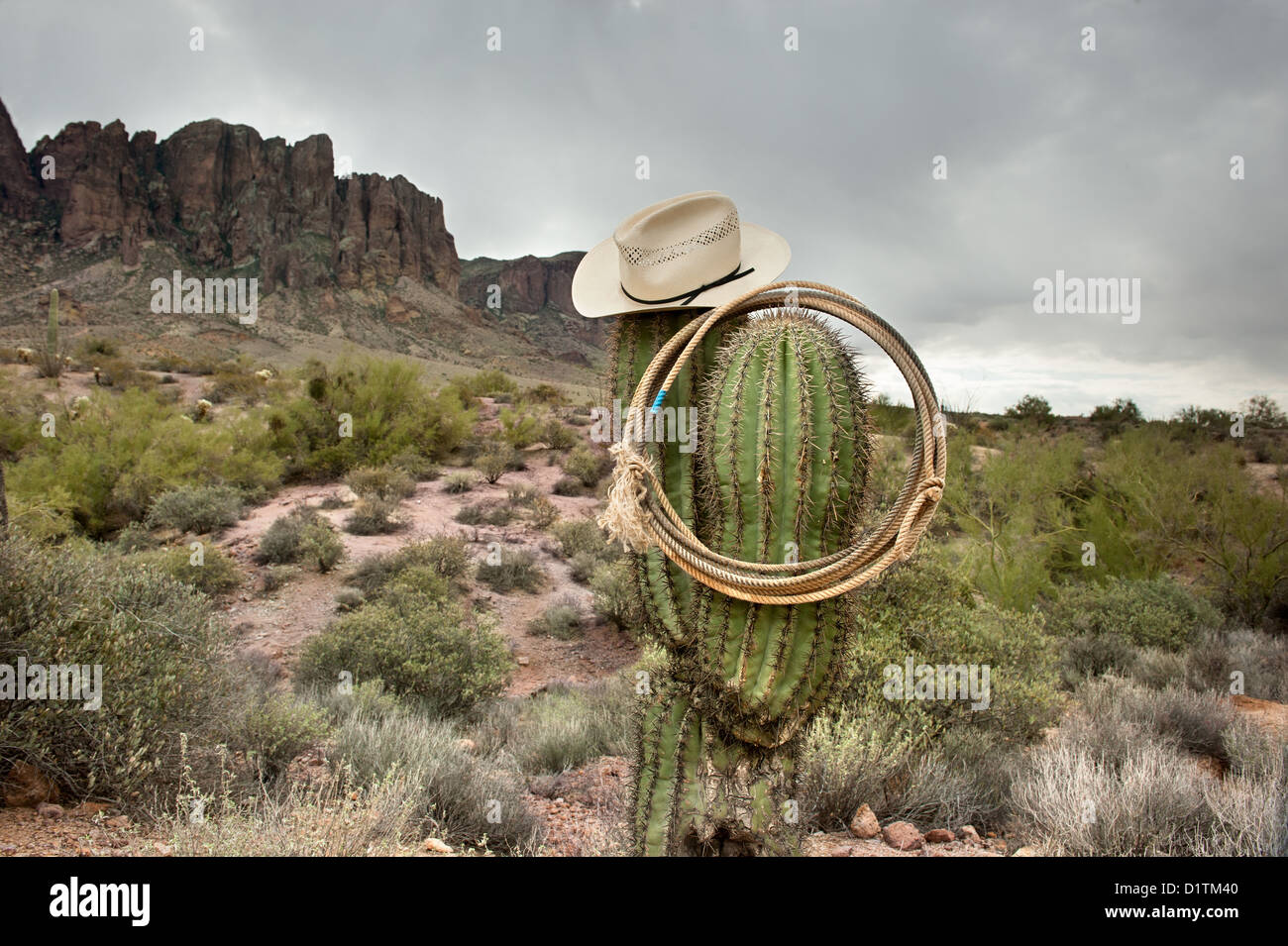 A moody image of a lasso and cowboy hat hanging on saguaro cactus in the Superstition Mountains in Arizona. - Stock Image