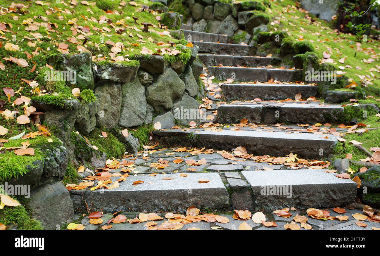 outdoor downward leading steps outdoor in a park with a shallow DOF - Stock Image