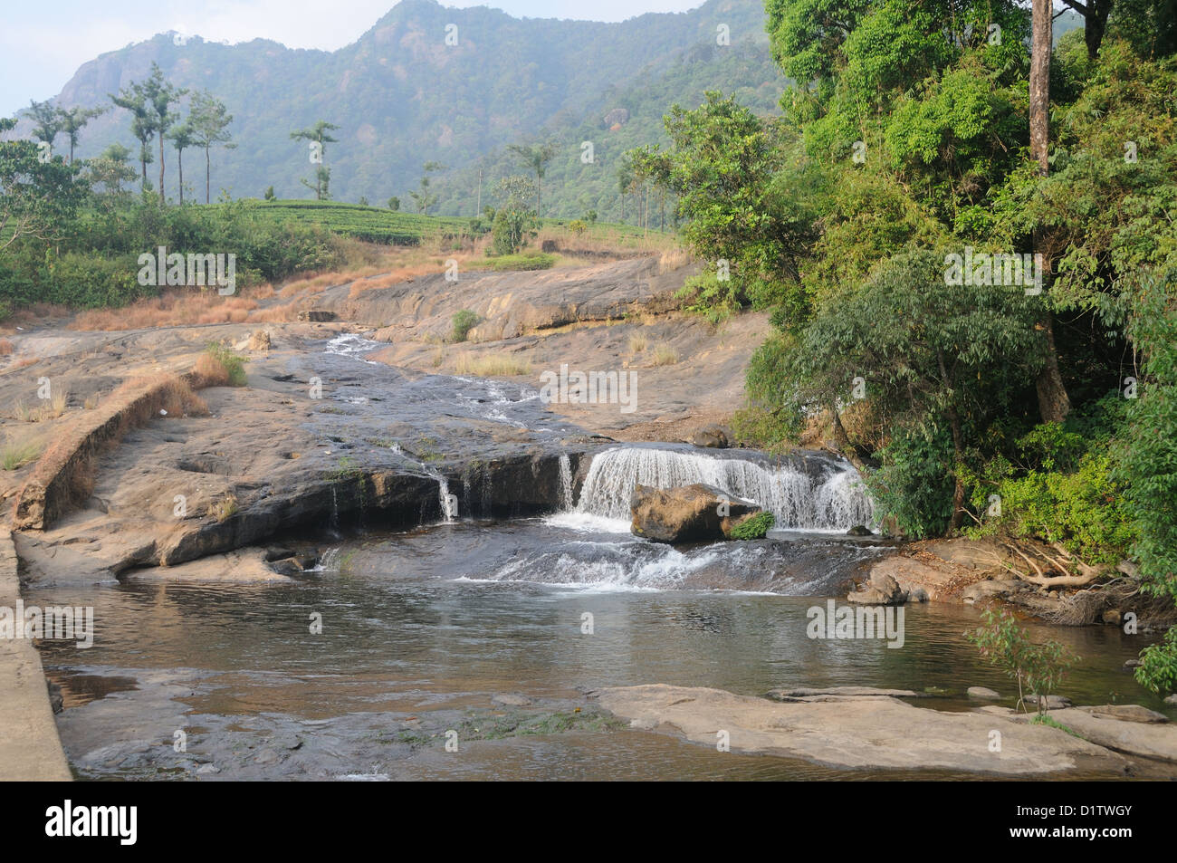Munnar Kerala India  Munnar is a hill station on the Western Ghats, a range of mountains situated in the Idukki - Stock Image