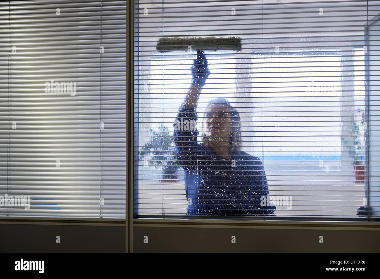 Woman at work, professional female cleaner cleaning and wiping window in office with detergent - Stock Image