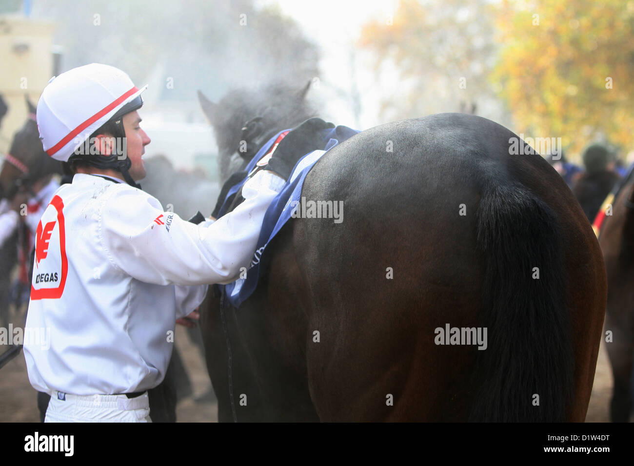 Halle, Germany, jockey saddle from his horse after the race - Stock Image