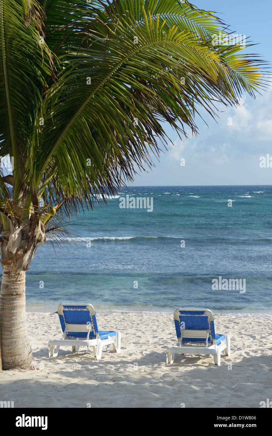 Lounge chairs on a Caribbean beach.  The Reef Resort, Grand Cayman, British West Indies - Stock Image
