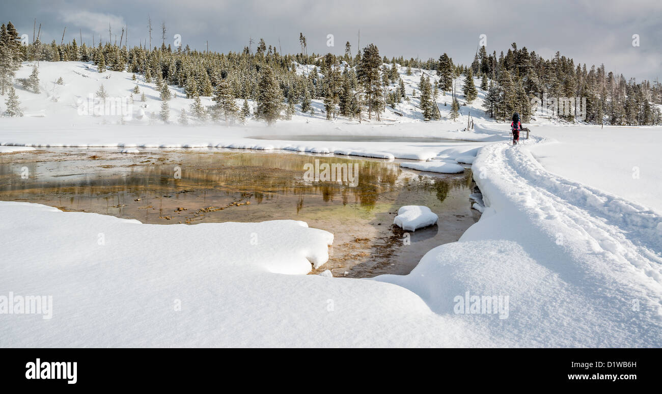 Snowshoer near a thermal Pool, Winter, Yellowstone National Park - Stock Image