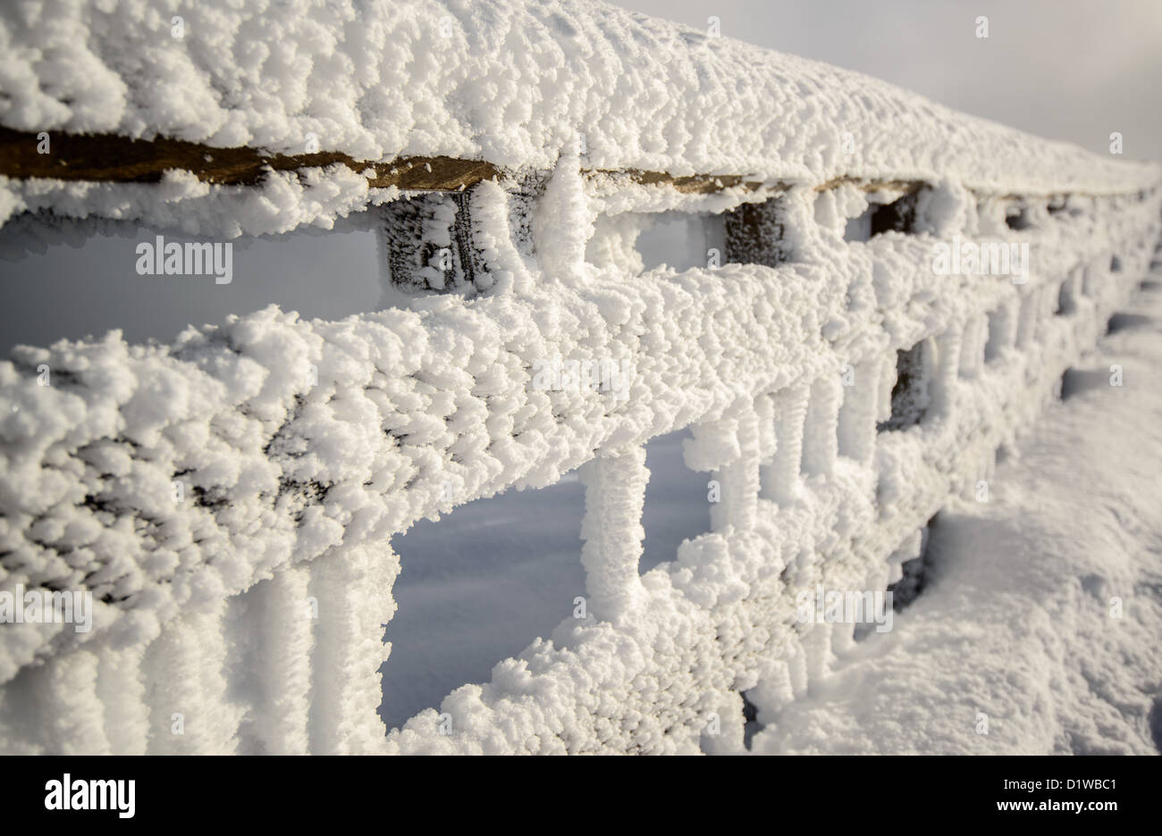 Frosted barrier - Stock Image
