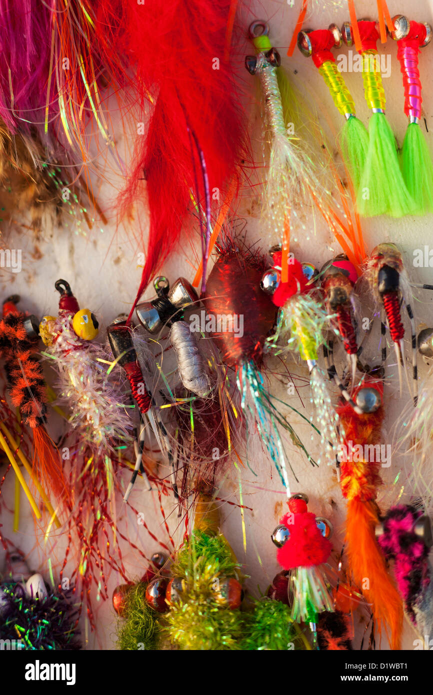 flys used for ocean fly fishing, Carpinteria, California, United States of America - Stock Image