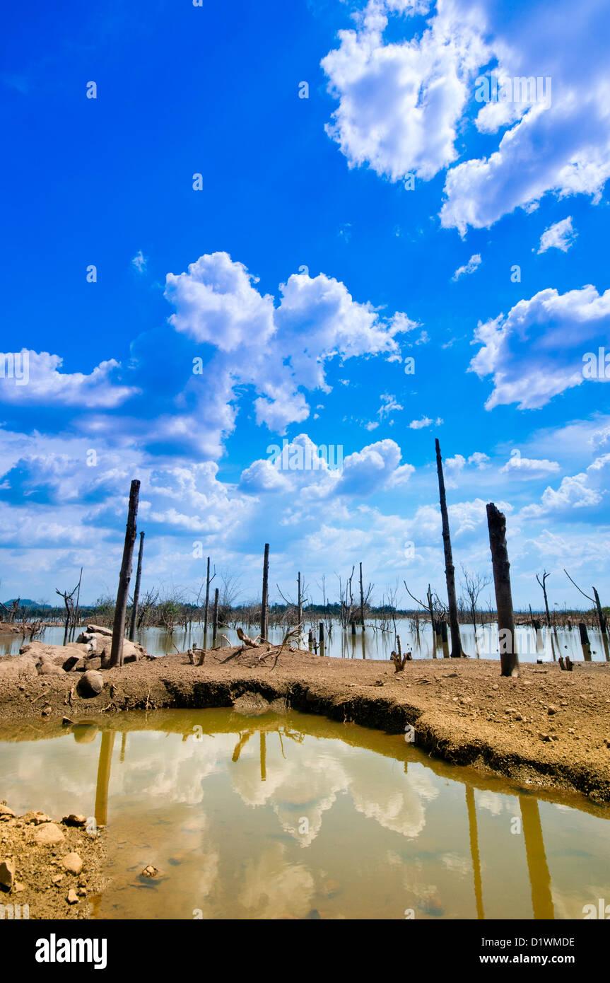 Deforestation and Environmental impact of Buon Kuop Dam. Dak Lak, Central Highlands, Vietnam, Asia - Stock Image