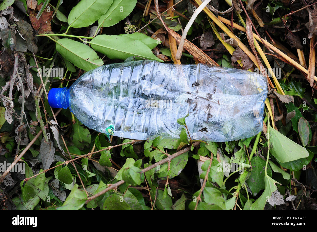 Plastic bottle lying in ditch bank. Pollution. - Stock Image
