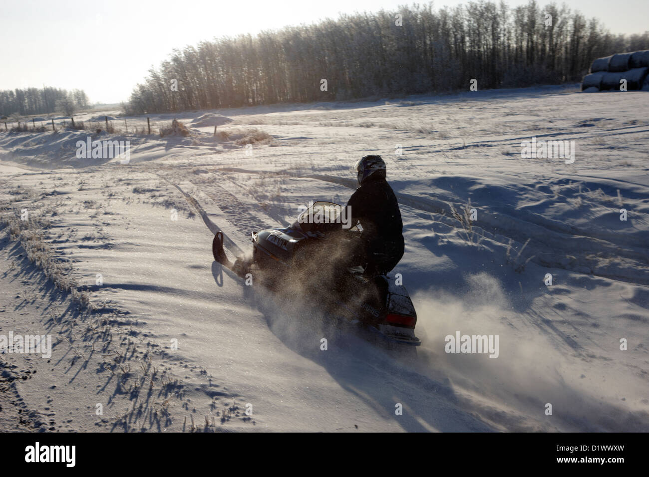 man on snowmobile crossing frozen fields in rural Forget Saskatchewan Canada - Stock Image