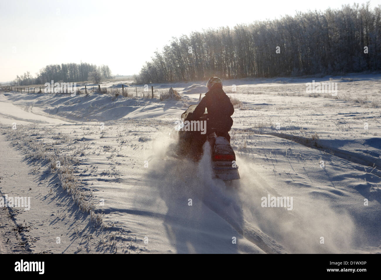 man on snowmobile crossing frozen fields in rural Forget Saskatchewan Canada - Stock Image
