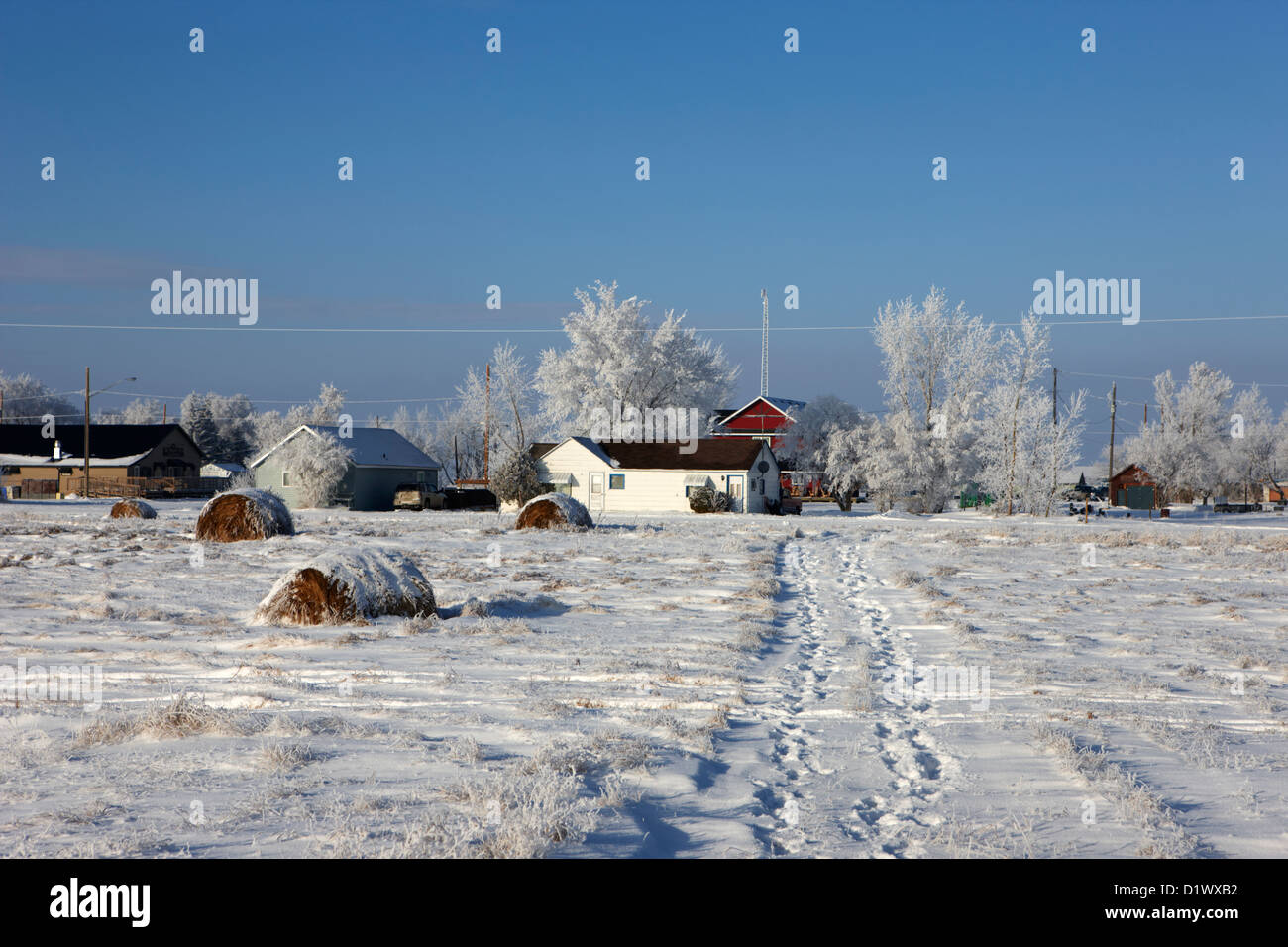 fresh footprints crossing deep snow in field towards small rural village of Forget Saskatchewan Canada - Stock Image