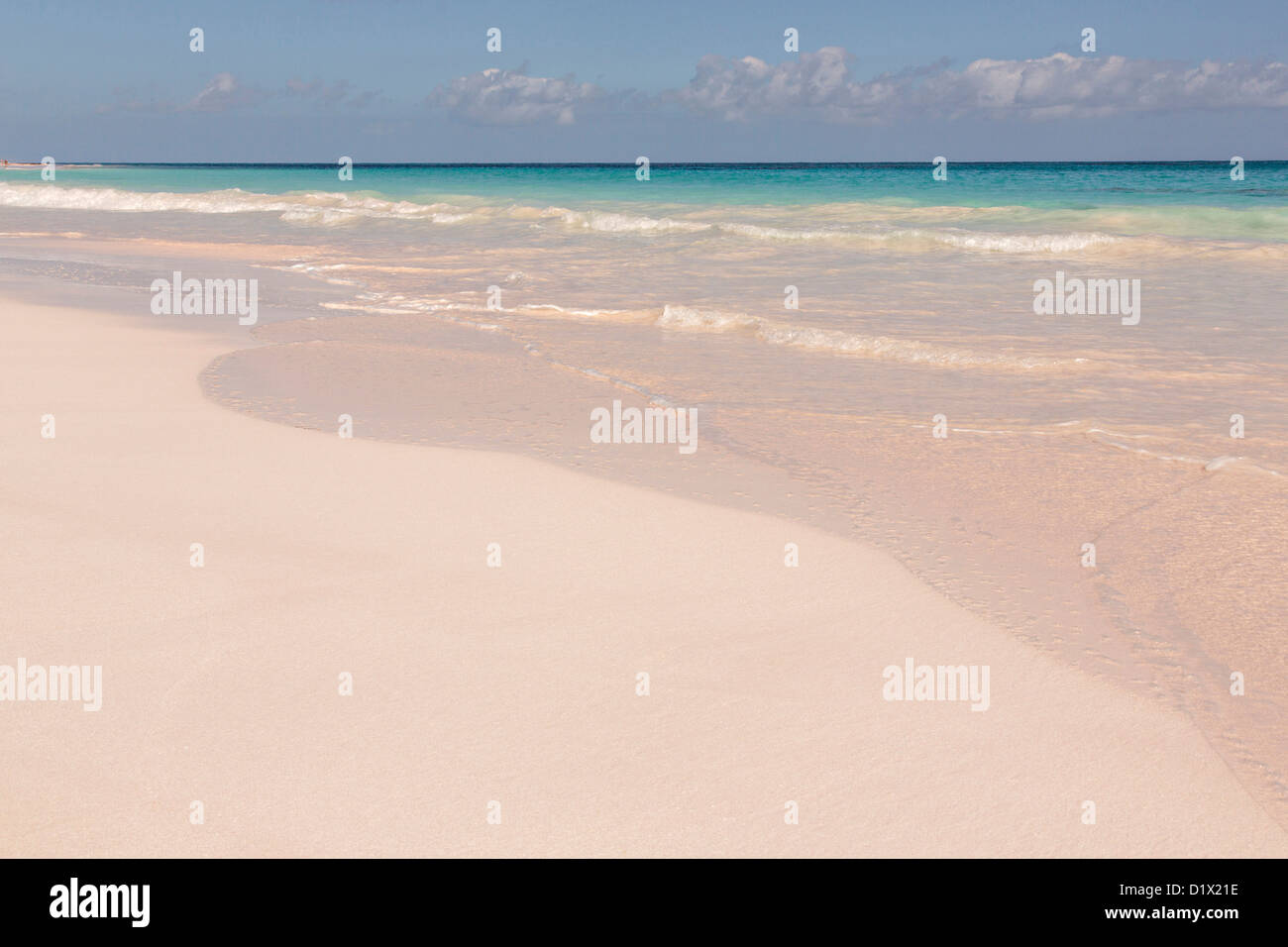 the pink sands beach in dunmore town harbour island the bahamas