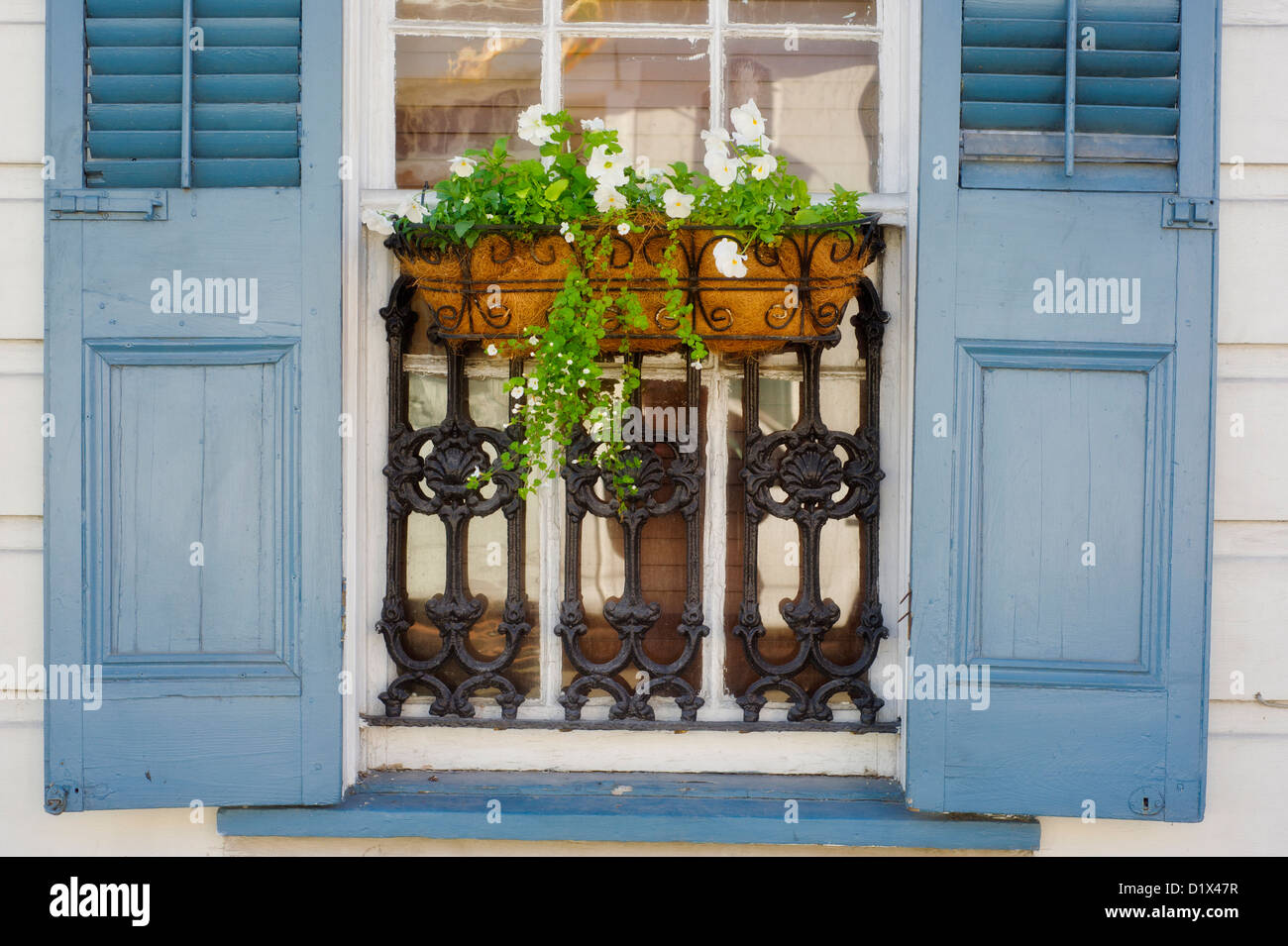 A window box of flowers and blue shutters on a house in the French Quarter in New Orleans, Louisiana. - Stock Image