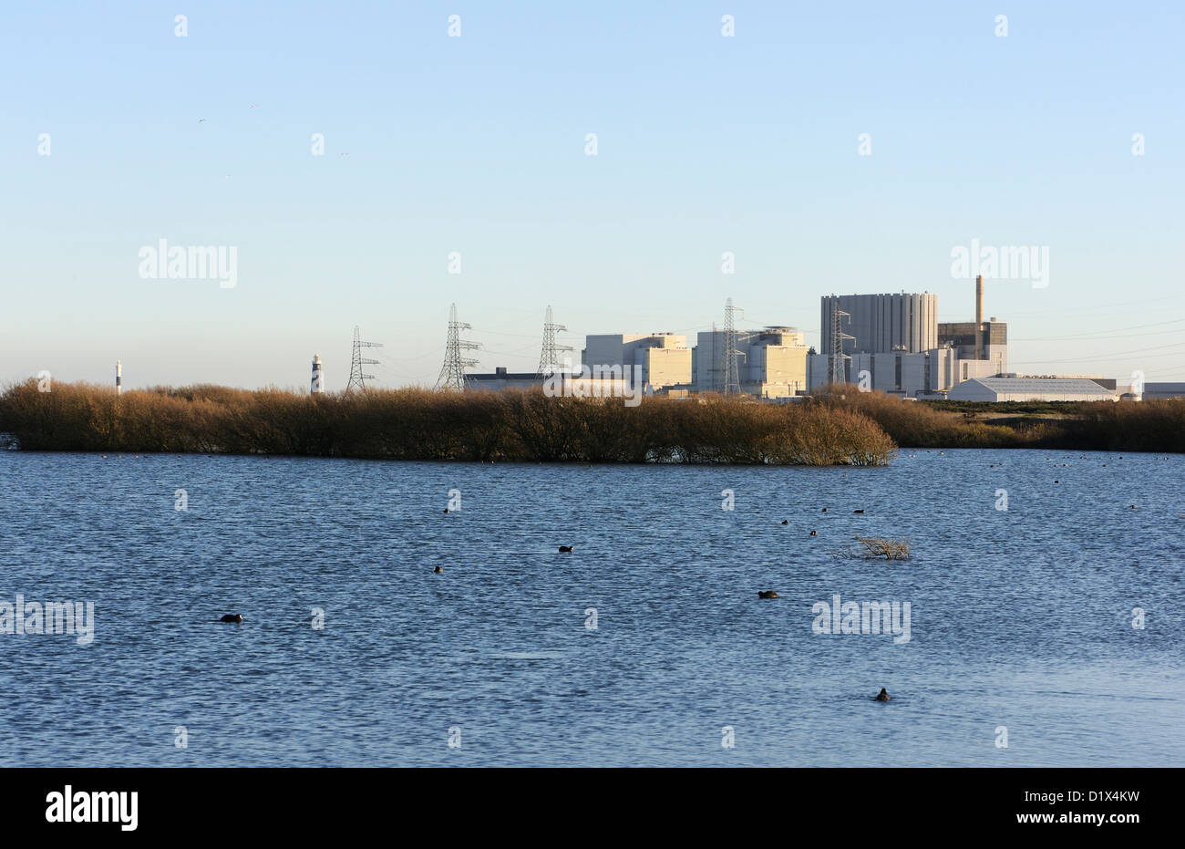 Dungeness nuclear power station. From the RSPB Dungeness Reserve. Coots can be seen on the lake in the foreground - Stock Image