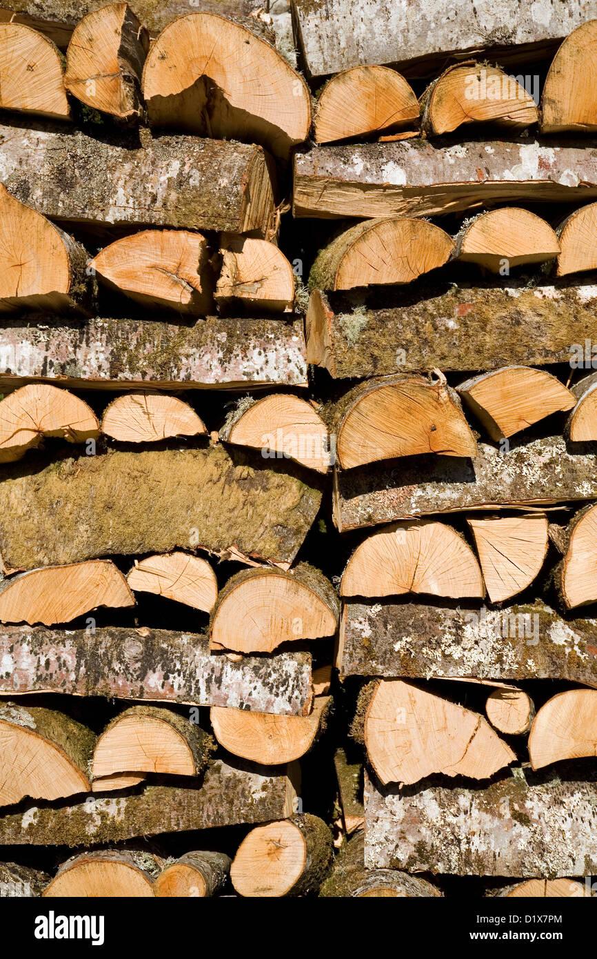 Lumber Rural House Village Mogrovejo Liébana Picos de Europa Cantabria Spain - Stock Image