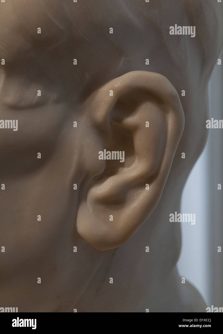 Left ear detail of marble sculpture - Stock Image