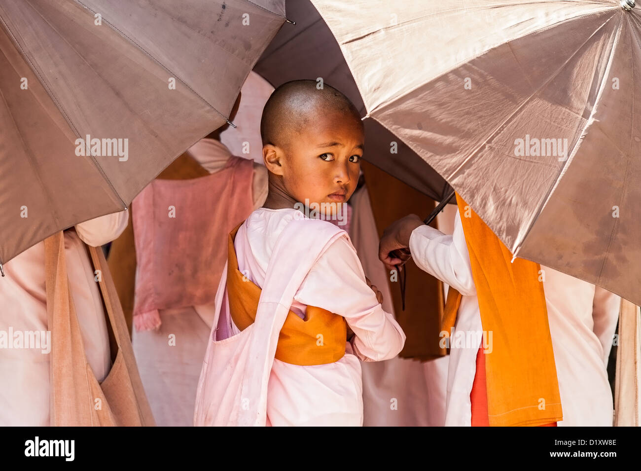 A young buddhist nun attends almsgiving in Kyaukme town, Shan State, Myanmar/Burma. Stock Photo