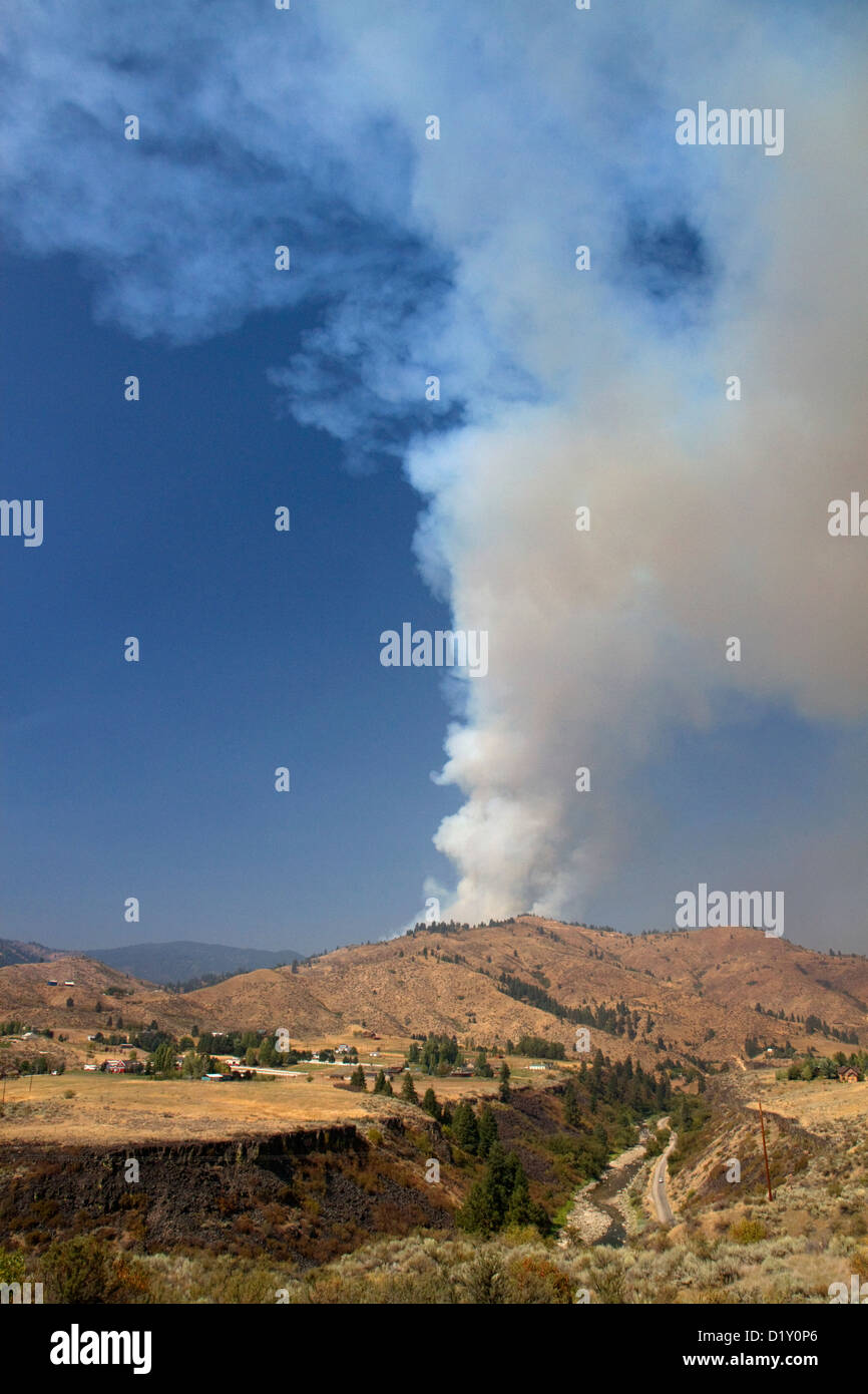 Plume of smoke from a forest fire in Boise County, Idaho, USA. - Stock Image