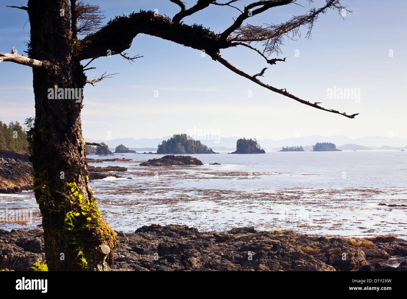 Broken Islands viewed from the Wild Pacific Trail on Vancouver Island, Ucluelet, British Columbia, Canada. - Stock Image
