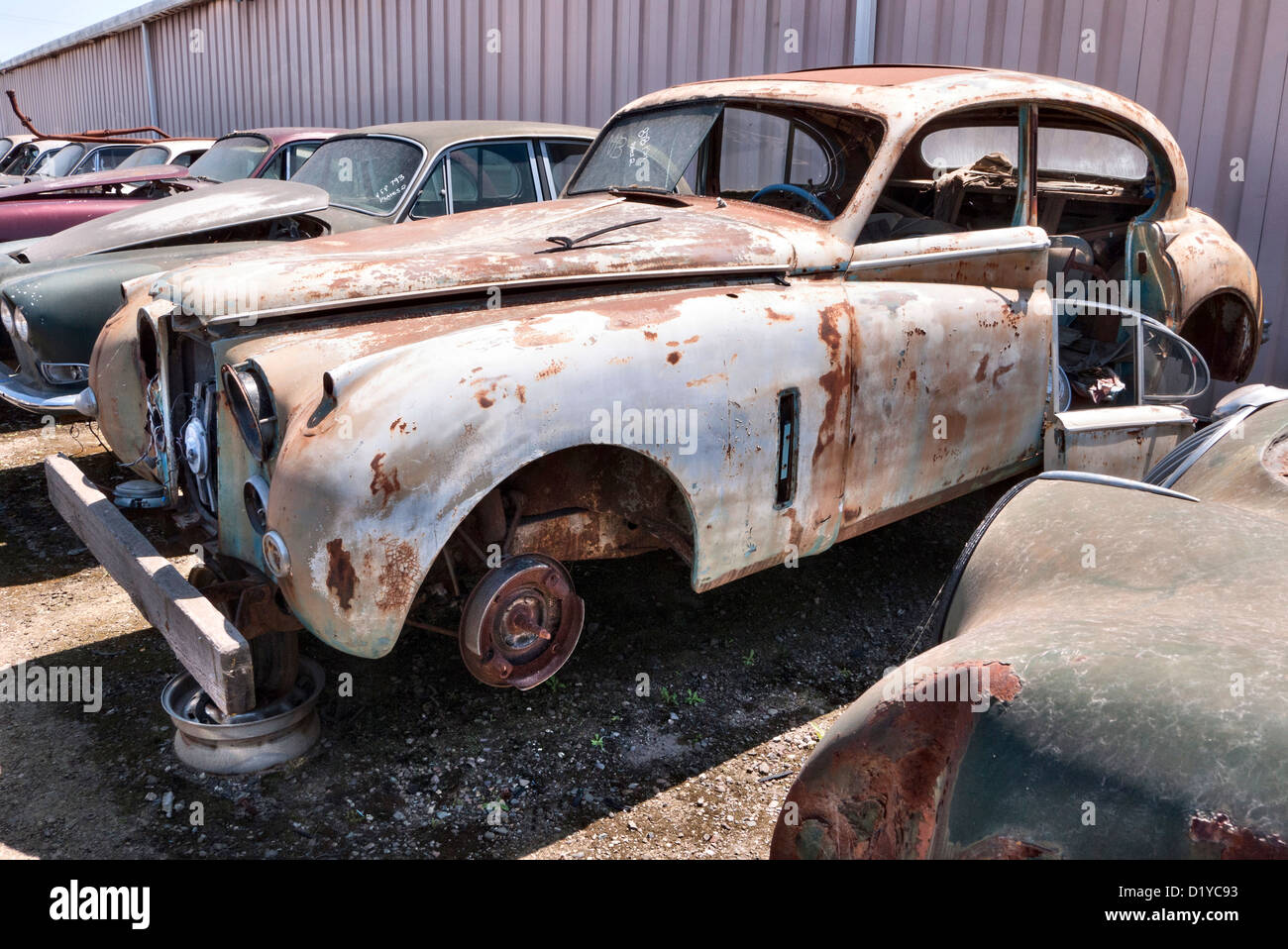 Jaguar recycling and junkyard in Stockton California USA - Stock Image
