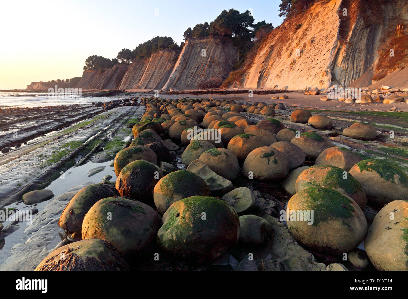 Bowling Ball Beach Schooner Gulch Point Arena California Usa