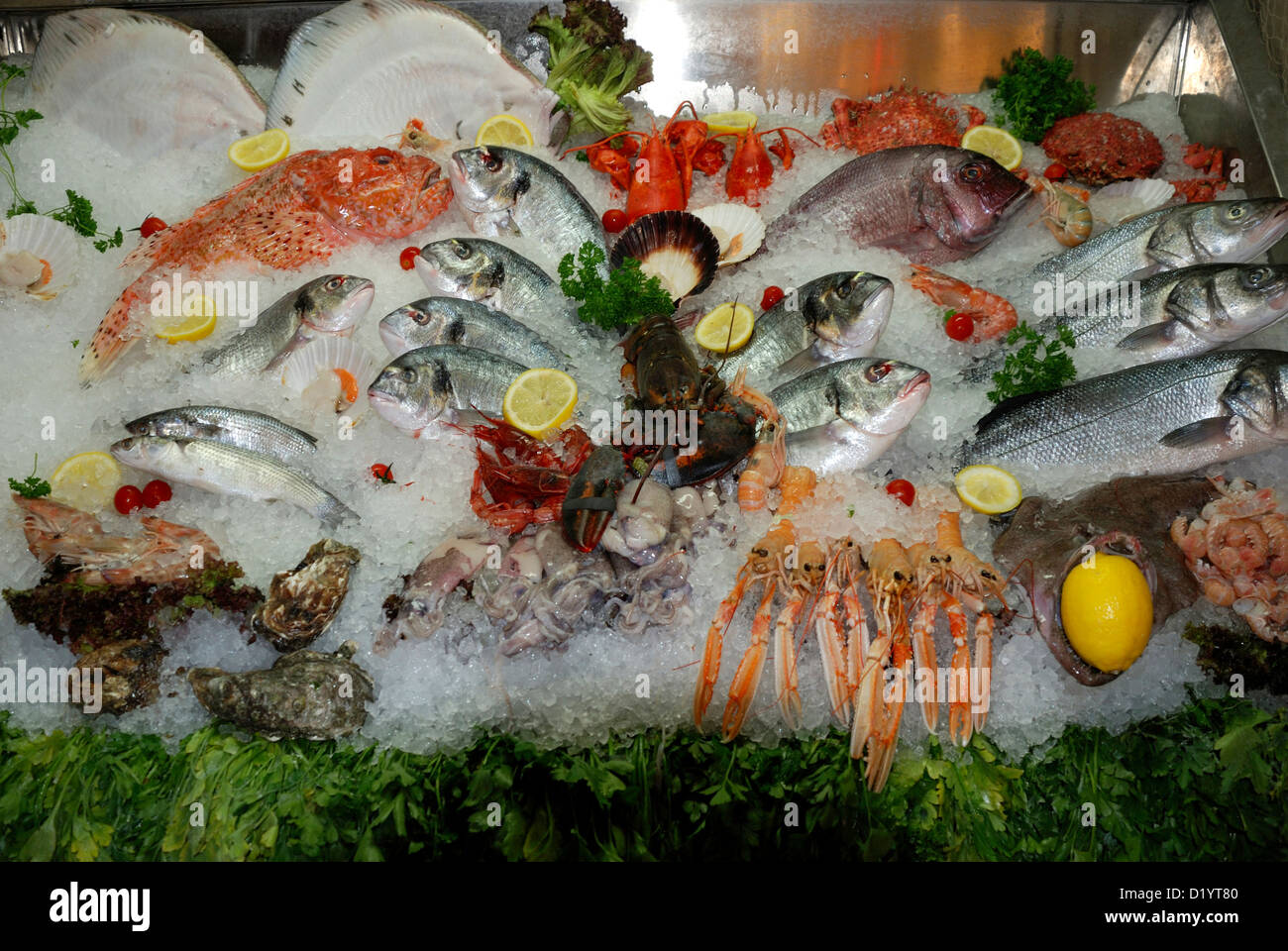 Seafood from the Adriatic Sea on a market in Venice. - Stock Image