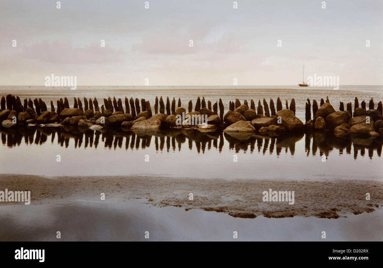 Sail boat and spur dyke at low tide, Neuwerk island, Hamburg Wadden Sea National Park, North Sea, Hamburg, Germany, - Stock Image