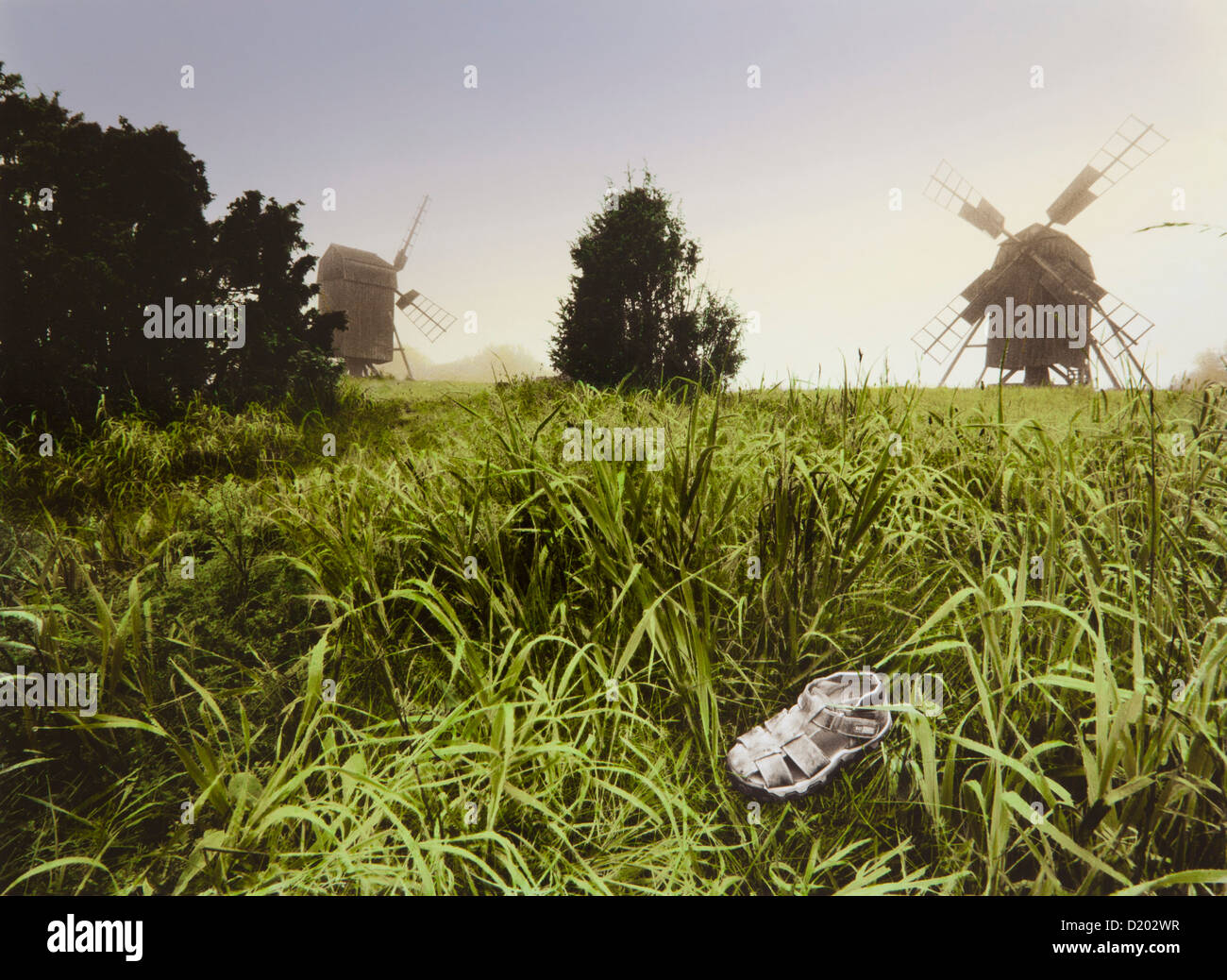 Child's shoe in the grass in front of wind mills, Oeland island, Sweden, Europe - Stock Image