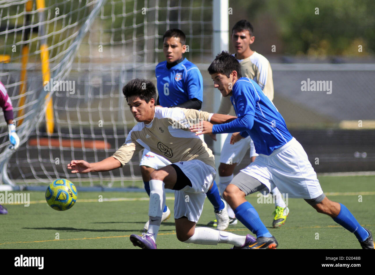 Soccer off-balance striker battles a defender as they scramble to control the ball in front of the goal during a - Stock Image