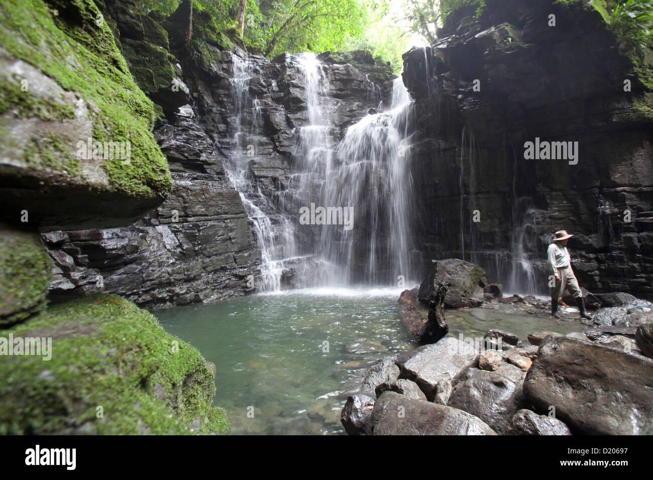 Water cascades, Cascada de Latas, Amazone, Ecuador, South America Stock Photo