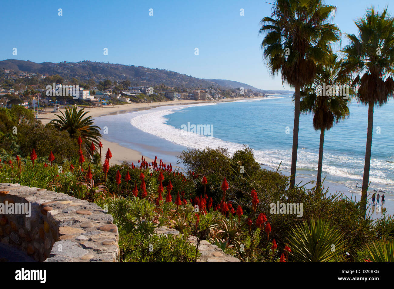 A spectacular view looking south along the coast at Laguna Beach California with red Aloe Vera and palm trees on Stock Photo