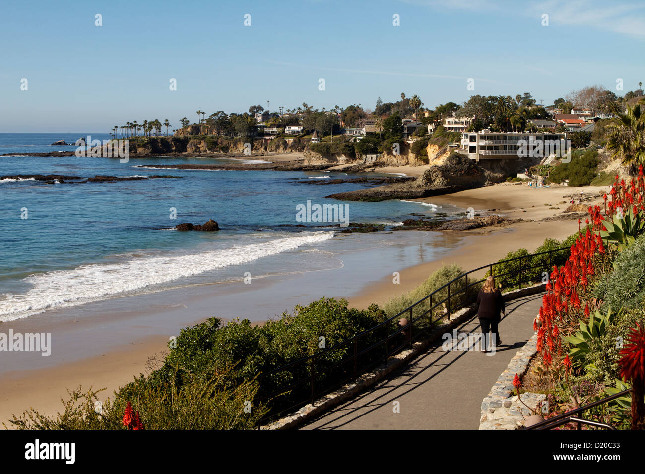 A coastal view of Laguna Beach California with vibrant red Aloe Vera flowering along the cliff tops of this popular Stock Photo