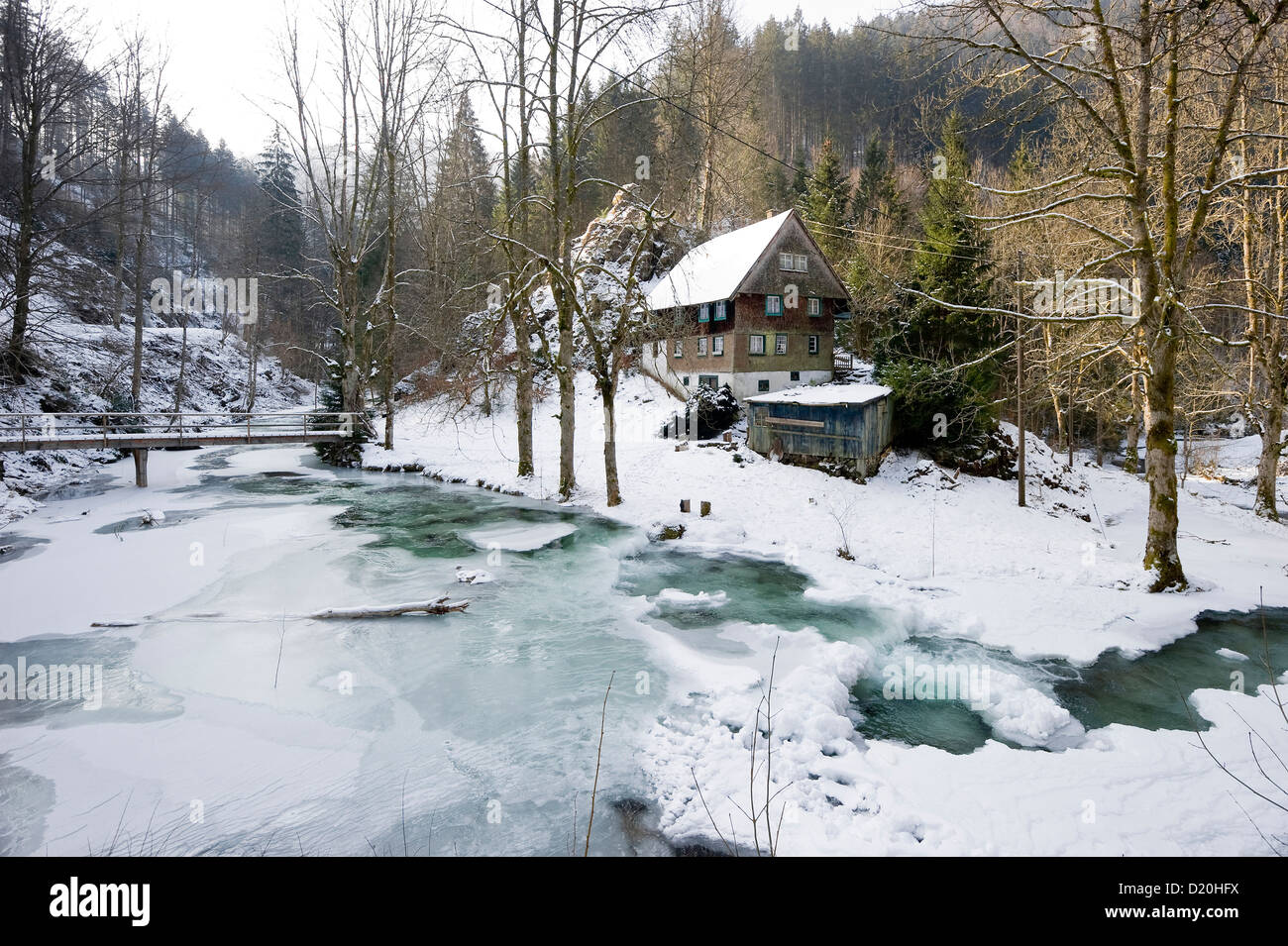 Traditional house and icy stream near Hinterzarten, Black Forest, Baden-Wurttemberg, Germany - Stock Image