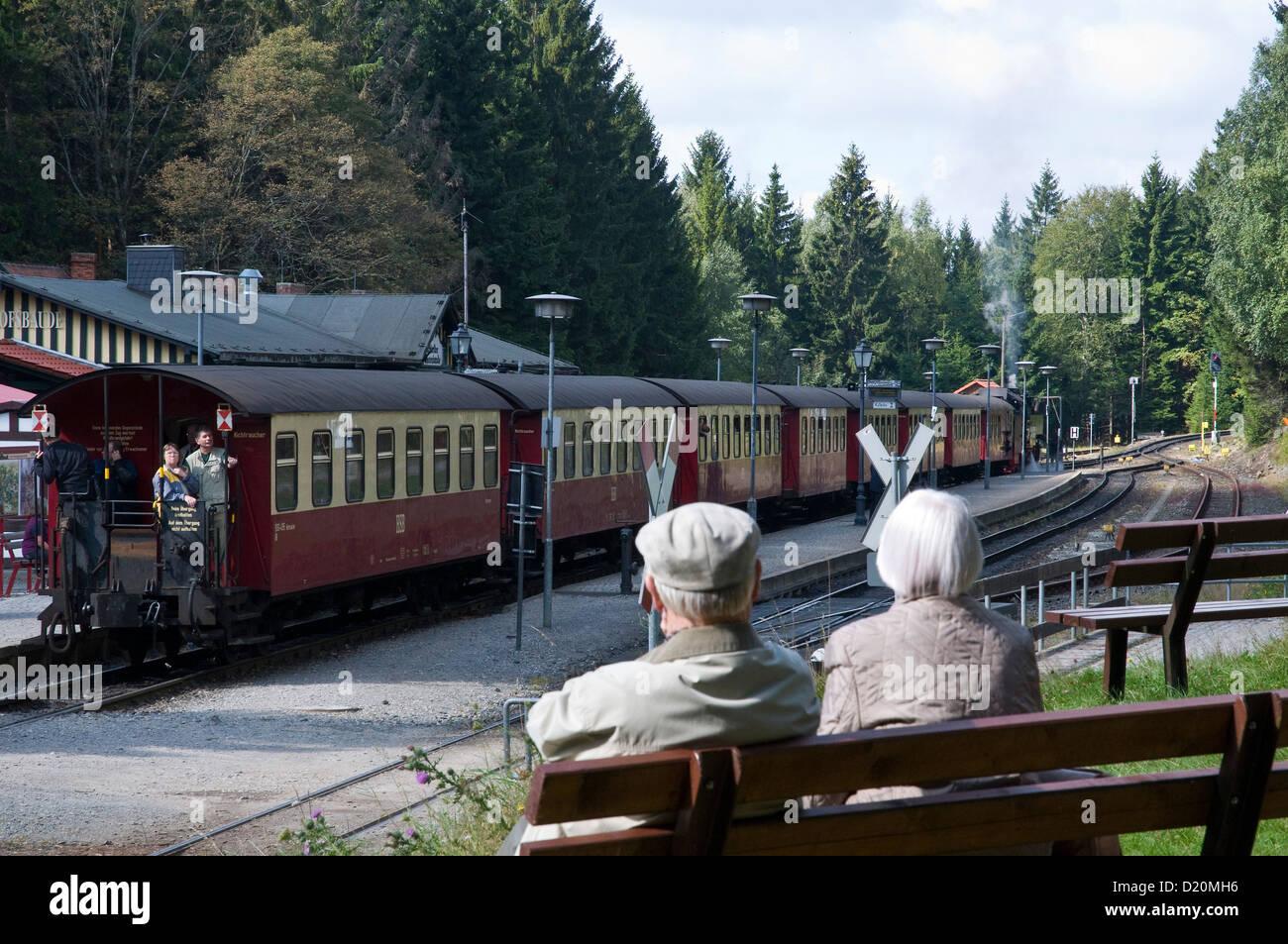 Steam railway, Brockenbahn, HSB Harz narrow-gauge railways, railway station Schierke, Harz, Saxony-Anhalt, Germany - Stock Image
