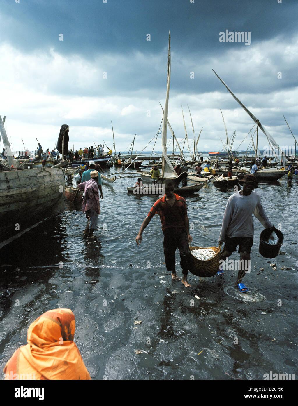 Fish market at the old Dhow harbour, fisher boats get unloaded, Malindi, Zanzibar Town, Zanzibar, Tanzania, East - Stock Image