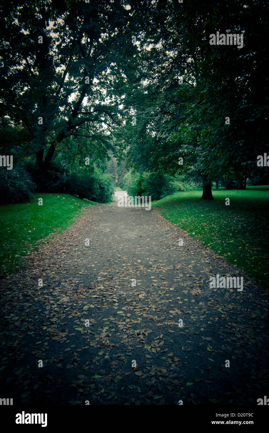 mysterious dark road leading into a park - Stock Image