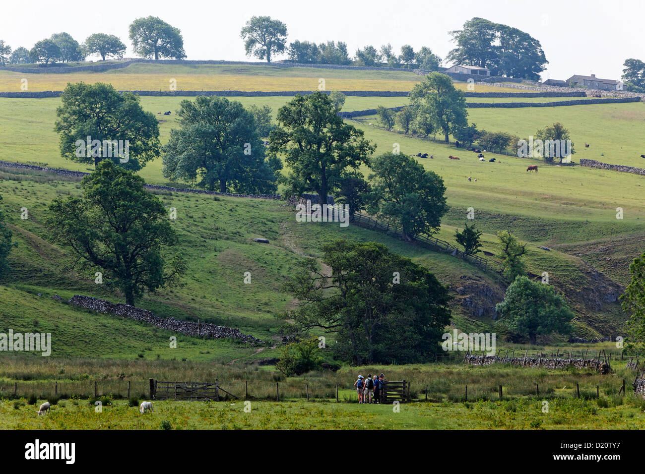 Idyllic landscape at Yorkshire Dales National Park, Yorkshire Dales, Yorkshire, England, Great Britain, Europe - Stock Image