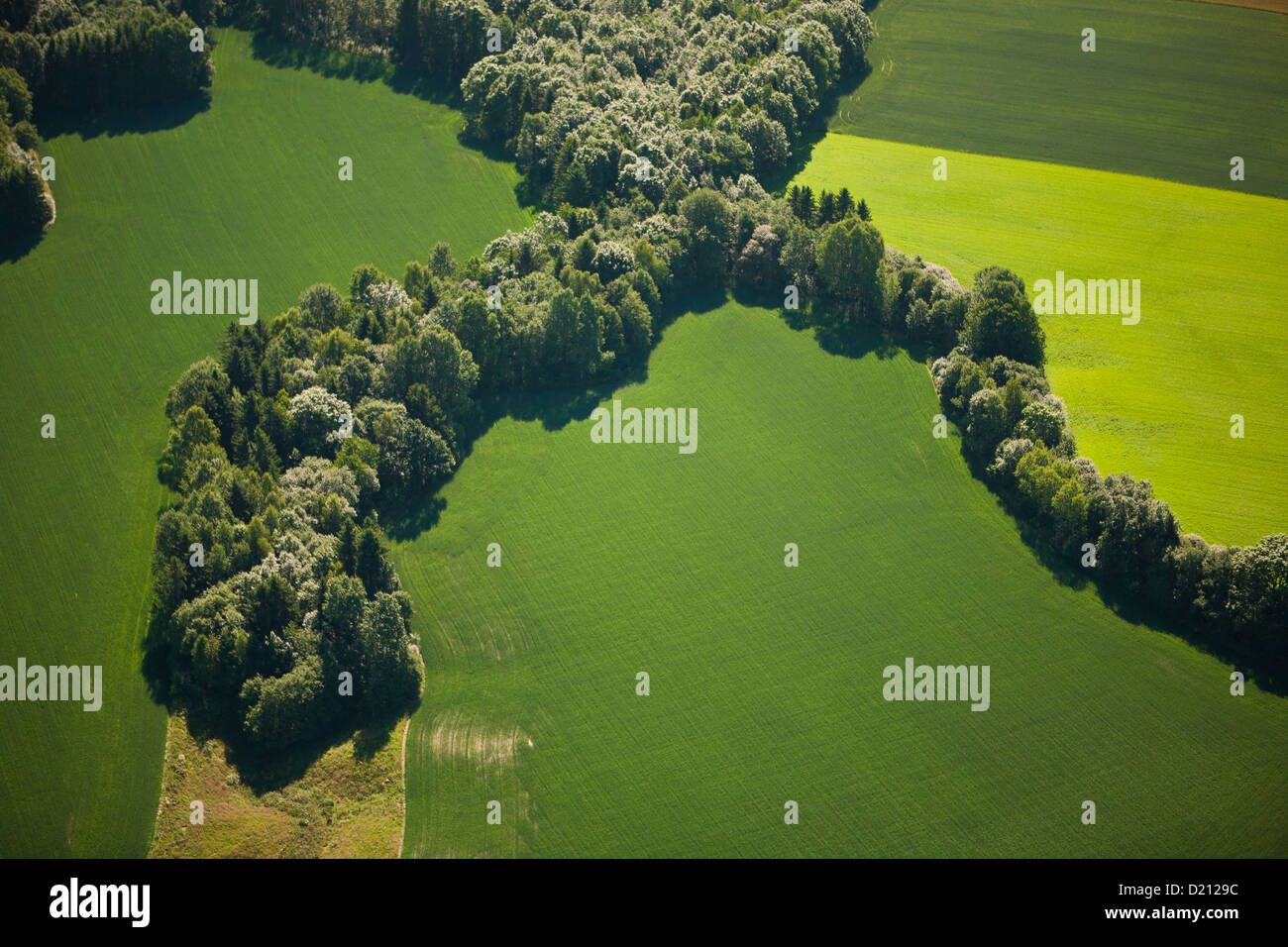 Aerial photo of green and yellow fields and forest. near Lillestrøm, southeastern Norway. - Stock Image
