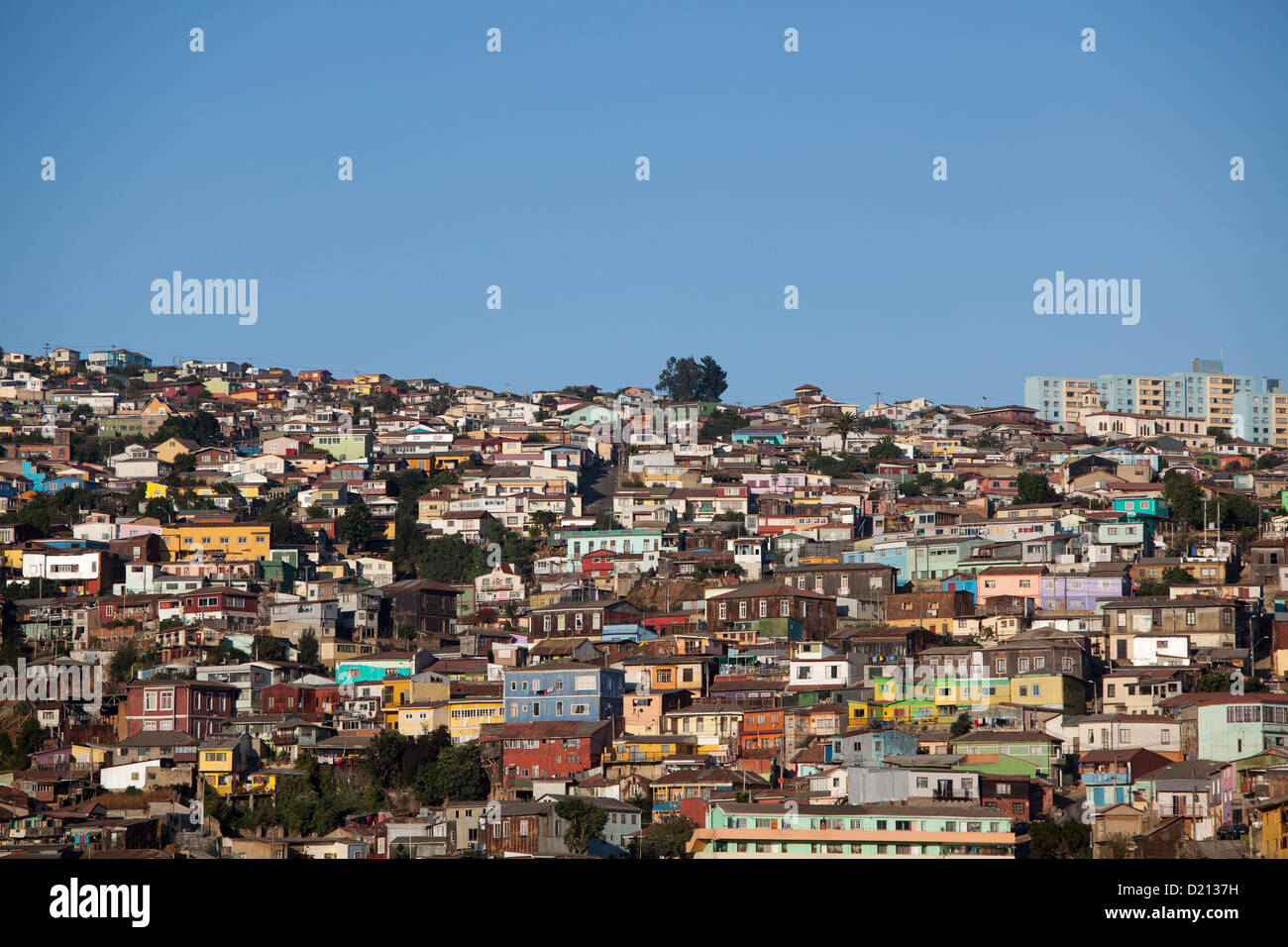 Colorful houses on hillside, Valparaiso, Chile, South America - Stock Image