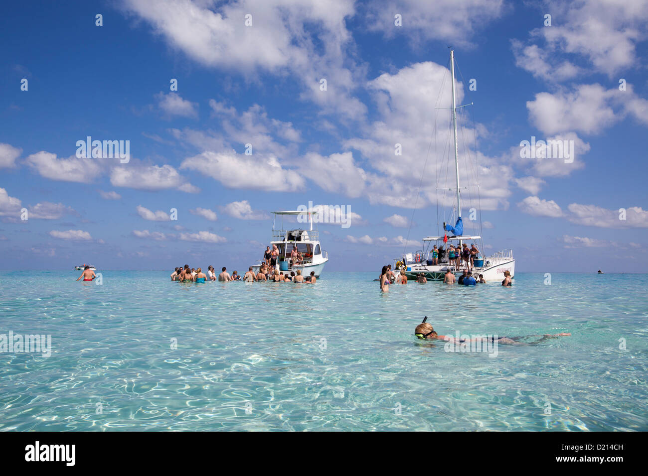 Snorkeler and excursion boats at Stingray City sand bank, Grand Cayman, Cayman Islands, Caribbean - Stock Image