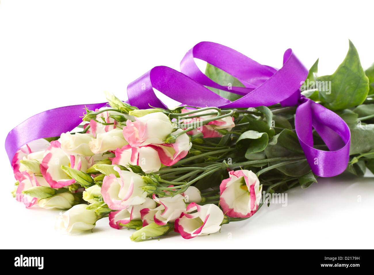 Bouquet of pink lisianthus flowers on a white background stock photo bouquet of pink lisianthus flowers on a white background mightylinksfo