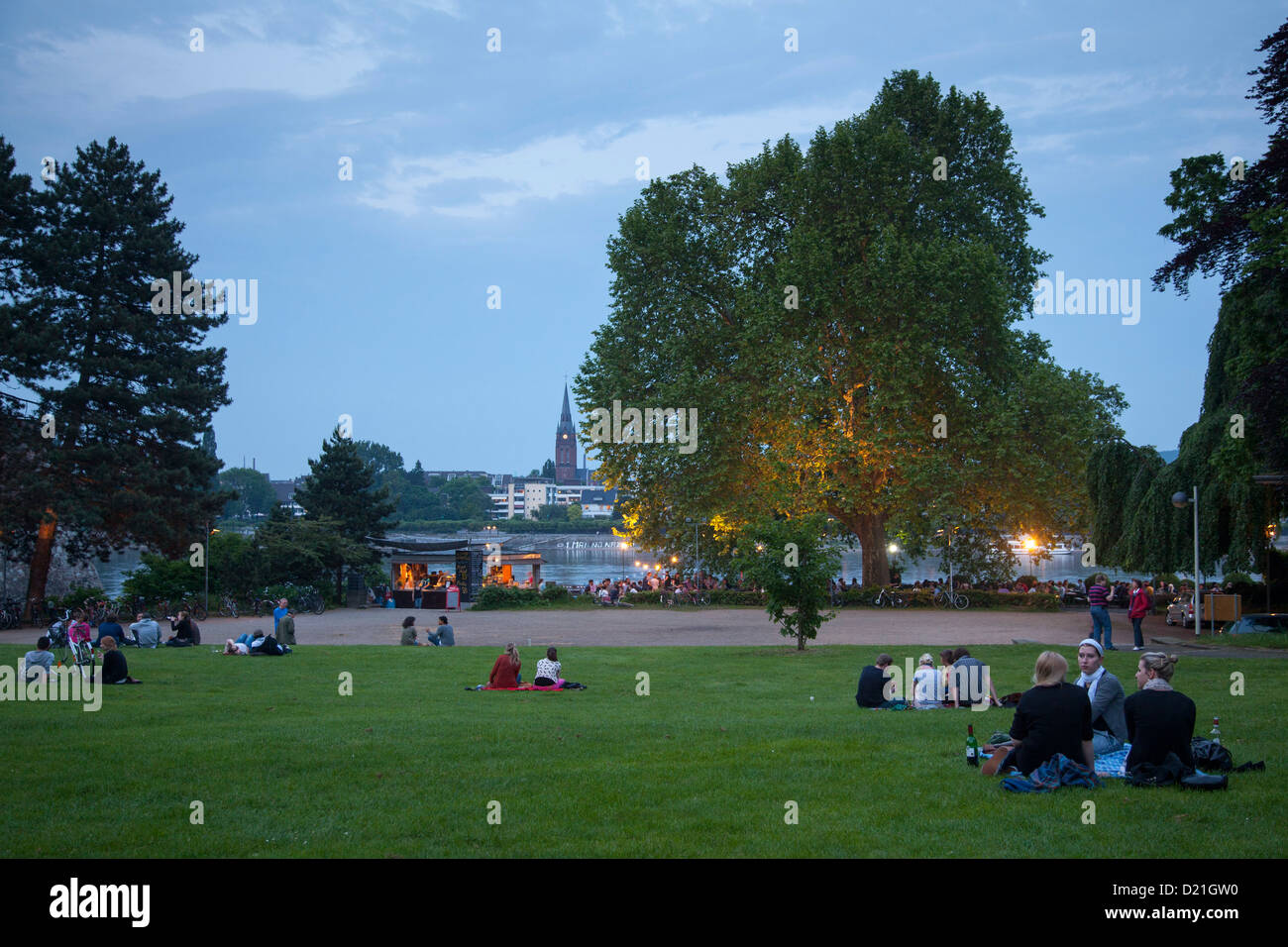People sitting on the lawn underneath giant plantain tree at Alter Zoll beer garden in the evening, Bonn, North - Stock Image