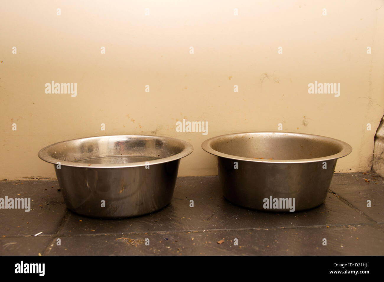 Metal dog bowls containing water and dried food Stock Photo