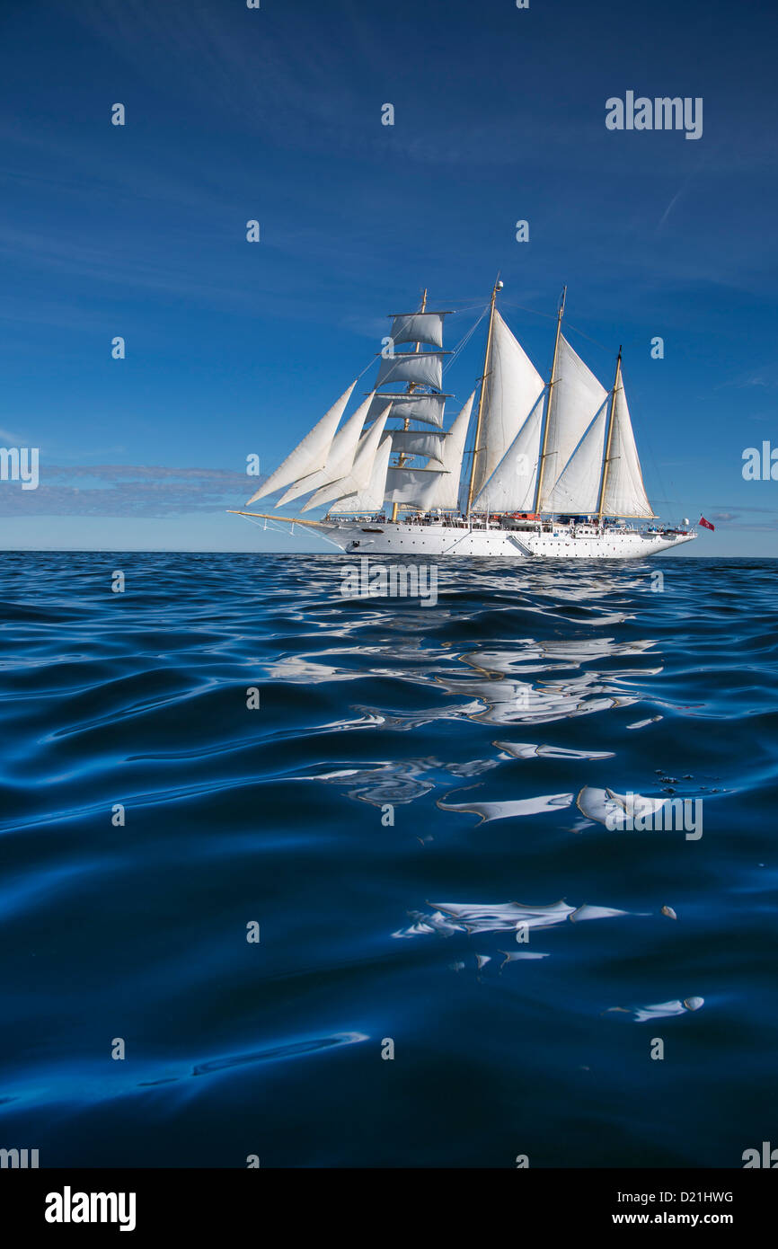 Sailing cruise ship Star Flyer under full sail, Baltic Sea, Finland, Europe - Stock Image