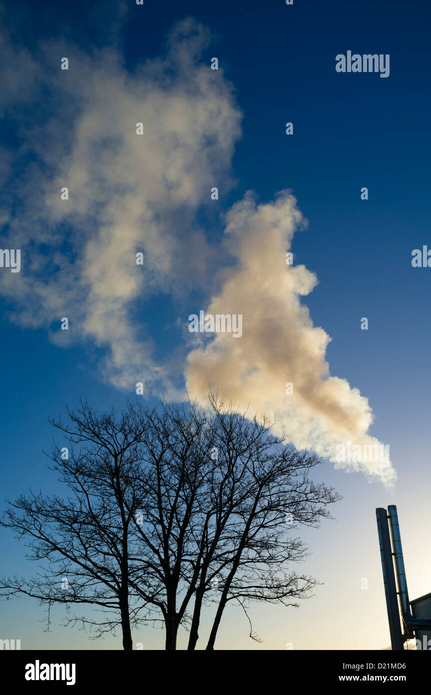 Steam escaping from the chimney of a commercial biomass-fueled combined heat and power (CHP) plant, on a cold winter - Stock Image