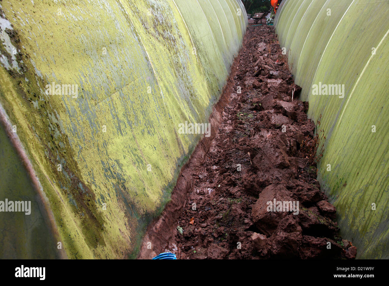 Replacing the polythene cover of a polytunnel - digging out the trench in which the old sheet is buried Stock Photo