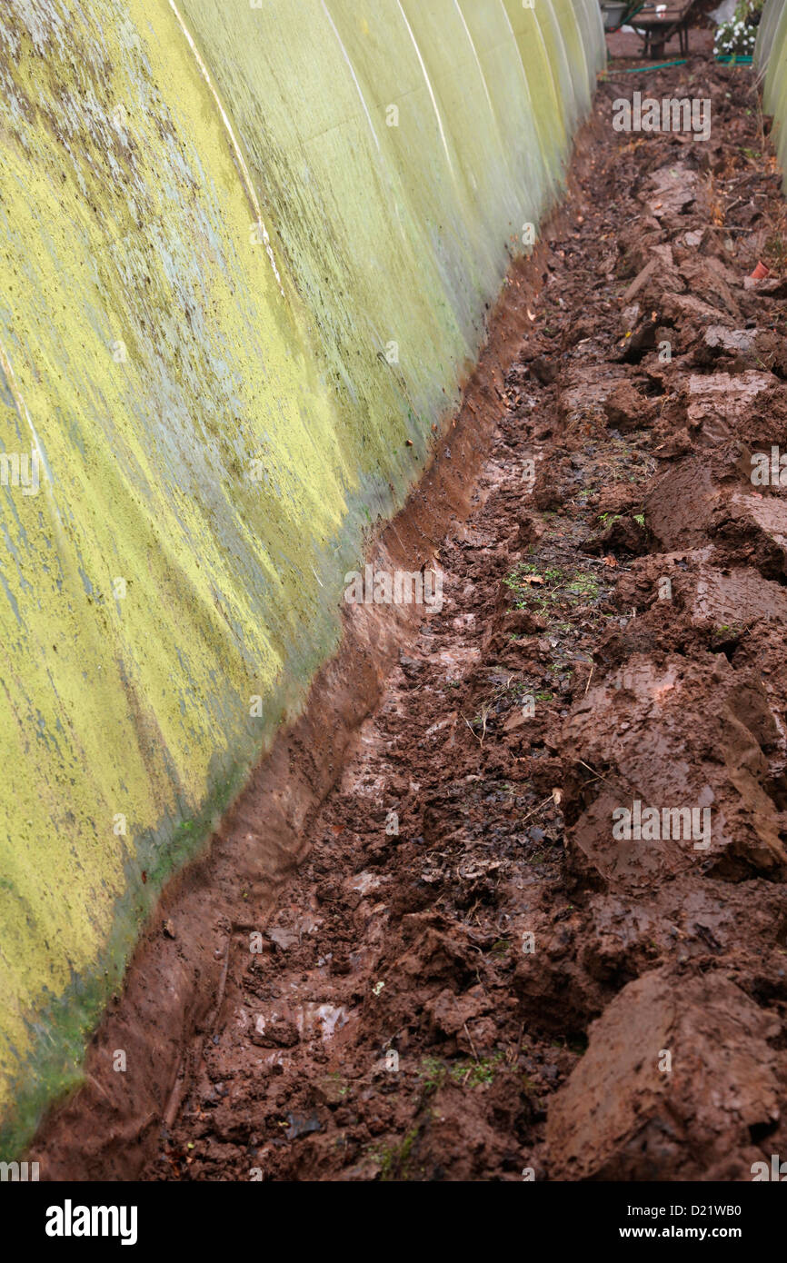 Replacing the polythene cover of a polytunnel - digging out the trench in which the old sheet is buried - Stock Image